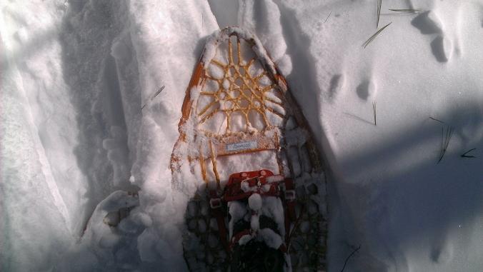 130210 Snowshoe
