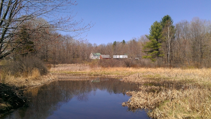 130502 Back Forty Pond