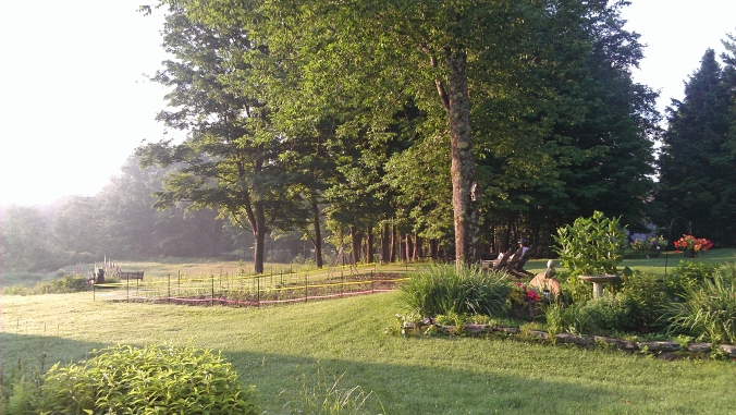 130630 Morning Mist