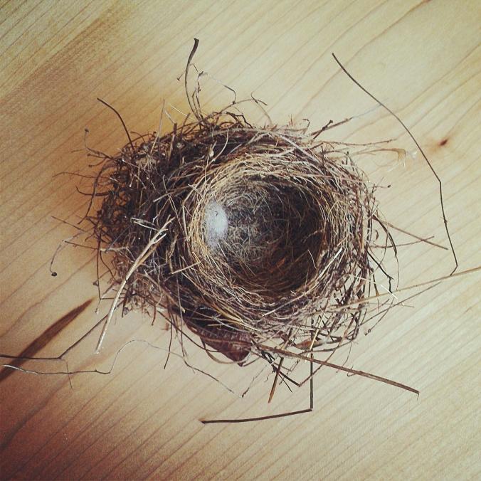 130707 Wren's Nest