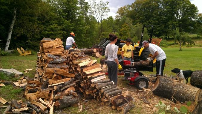 130818 Wood (1)