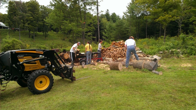 130818 Wood (2)