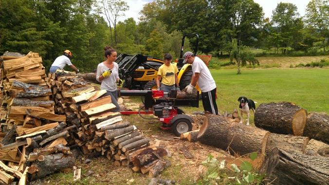 130818 Wood (4)