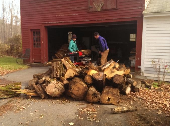 131102 Wood (2)