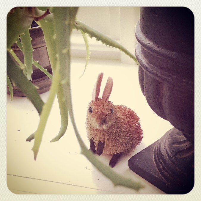 140104 Rabbit
