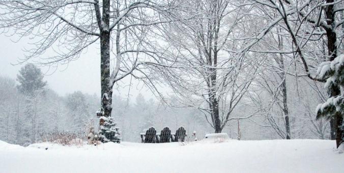 140118 Snow (1)