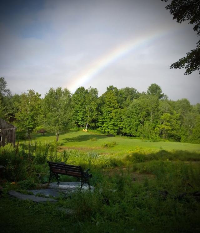 140813 Rainbow Lomo