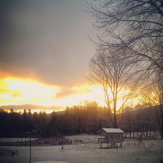 141114 First Snow