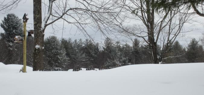150209 Adirondacks