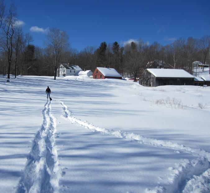 150222 Snow (17)