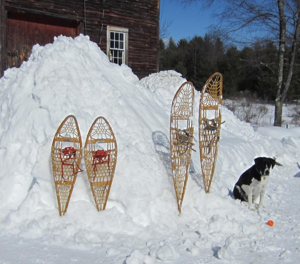 150222 Snow (24)