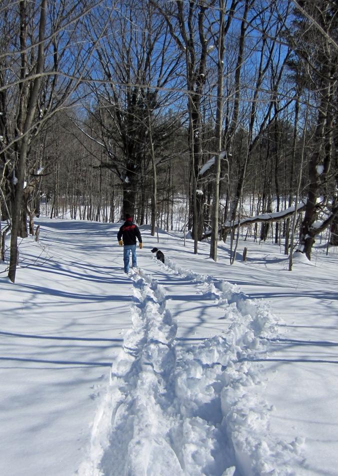 150222 Snow (9)