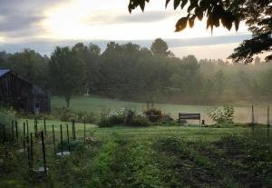 150830 Morning Mist